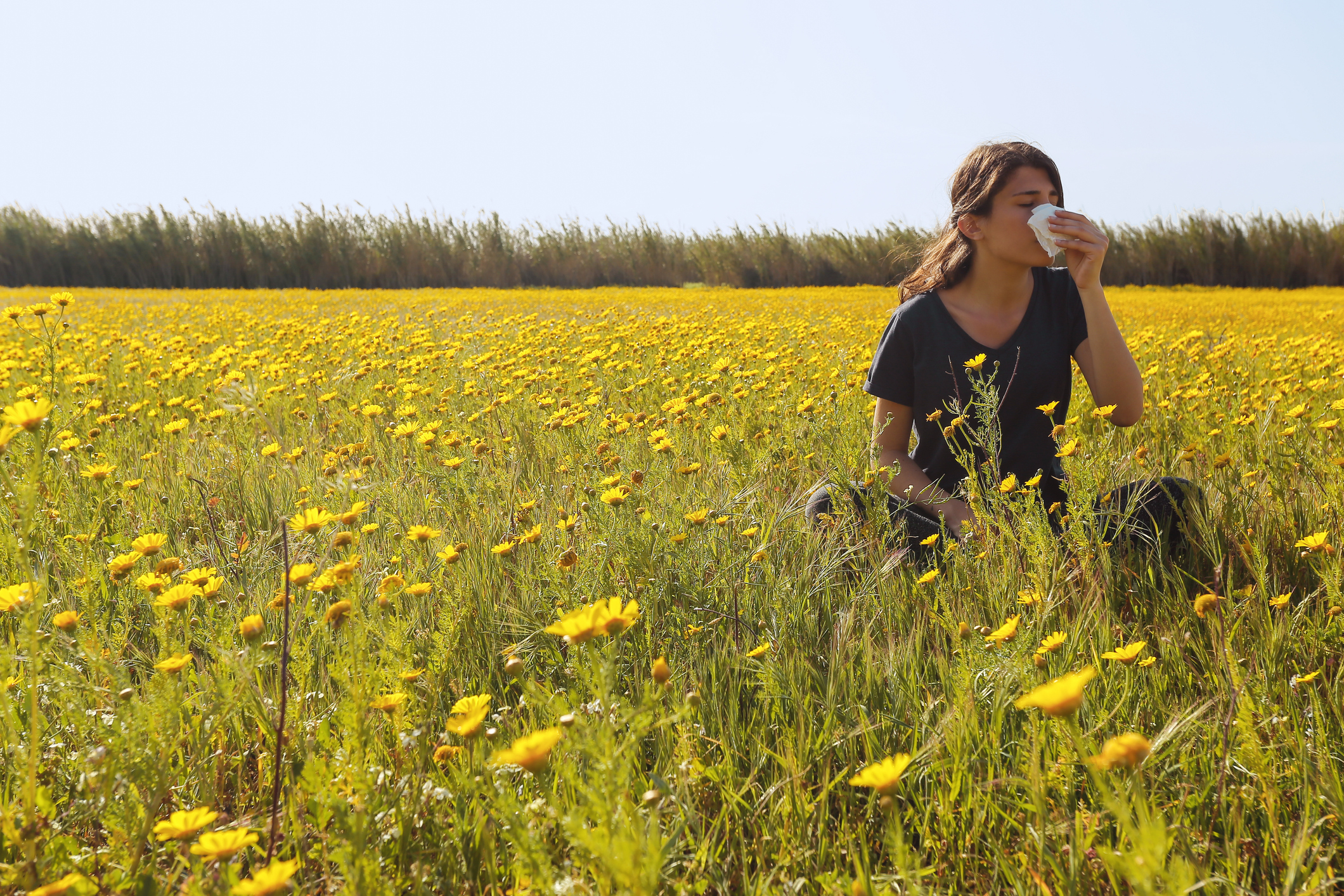 A young girl in flowery field sneezing in Cyprus.